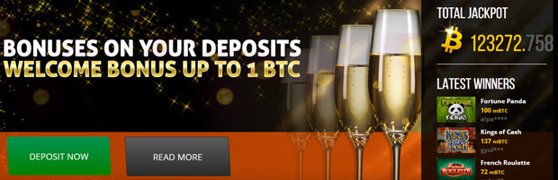 Bitcoin Accepted Online Pokies and Slot Casinos